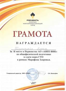 11 ГТО.  АНПЗ2